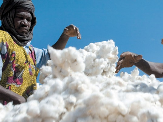 cotton in africa 2
