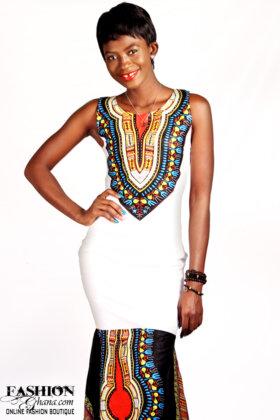 anelina print evening dress1