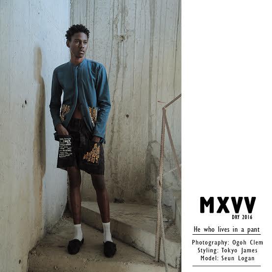 Maxivive_2016_6